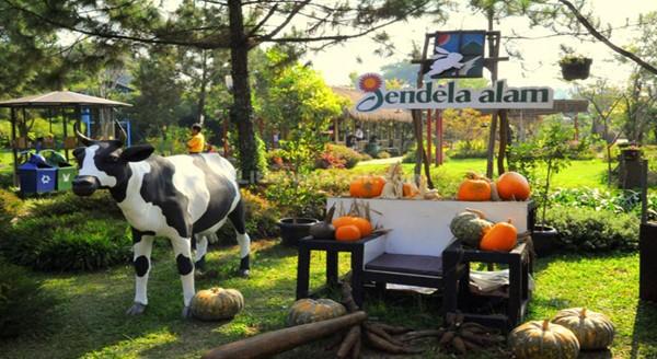 Wisata Edukasi Bandung Jendela Alam