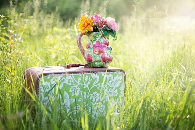 jarron con flores en el campo
