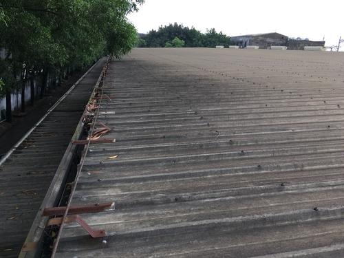 Hậu quả khi không chống thấm vít mái tôn