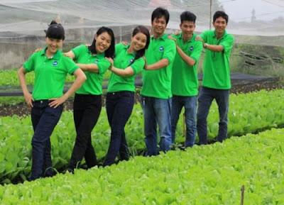 Trang trại rau sạch - hữu cơ HB