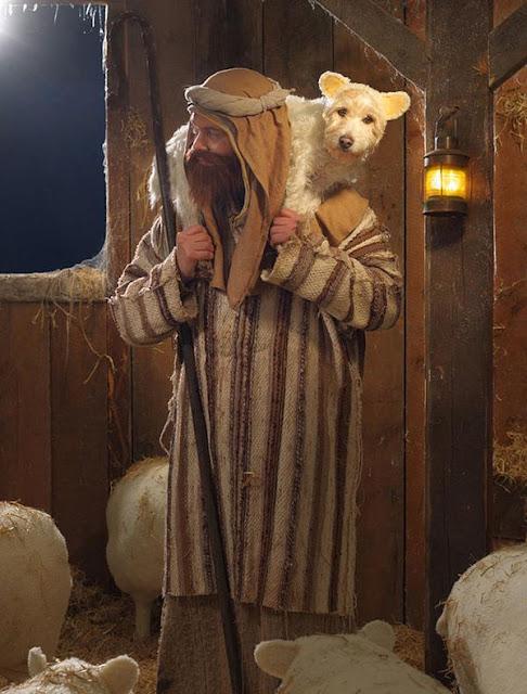 Chết cười với màn hóa trang chó thành đủ kiểu động vật nhân dịp Giáng Sinh