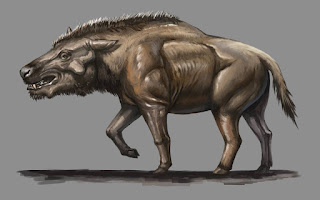 Jabalí prehistórico - Paraentelodon macrognathus