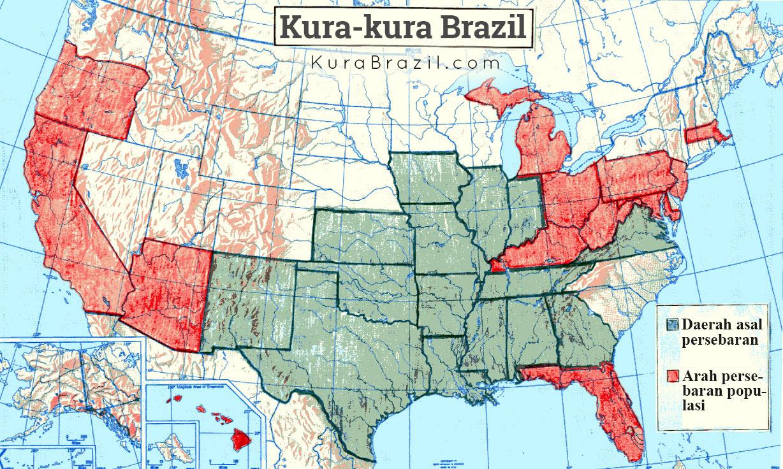 Peta Persebaran Kura-kura Brazil