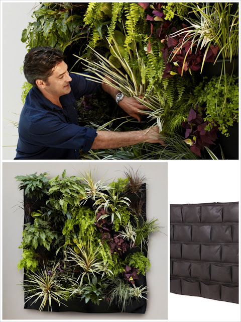 The Style Index : Wall Gardening With Jamie Durie