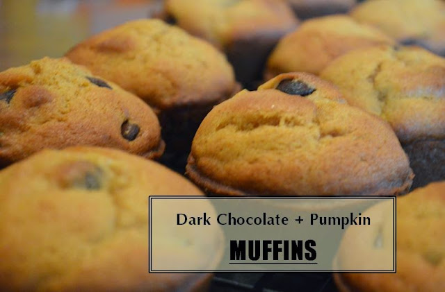 Chocolate Chip Pumpkin Muffins Recipe