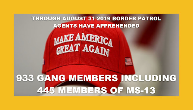 Memes: MAGA BORDER PATROL AGENTS APPREHENDED 933 GANG MEMBERS