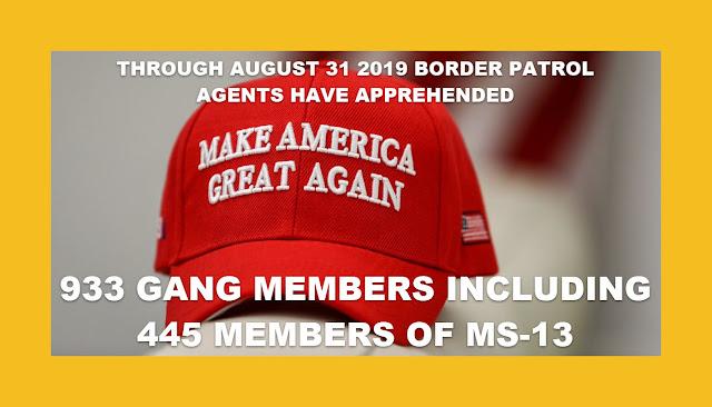Memes: MAGA BORDER PATROL AGENTS APPREHENDED 933 GANG MEMBERS