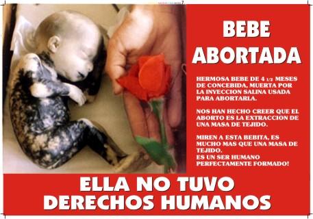 Precoz aborto que es