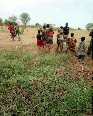 Boko Haram S*x Slaves, Pregnant Girls Rescued By Soldiers