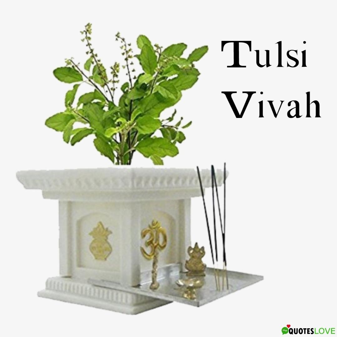 Tulsi Vivah Images 2019