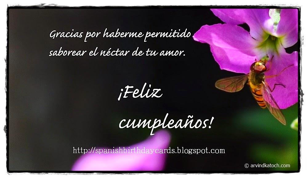 amor, amante, esposa, Spanish, Birthday Card, Tarjeta de cumpleaños