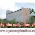 Cách nuôi yến lấy tổ ở Bình Thuận