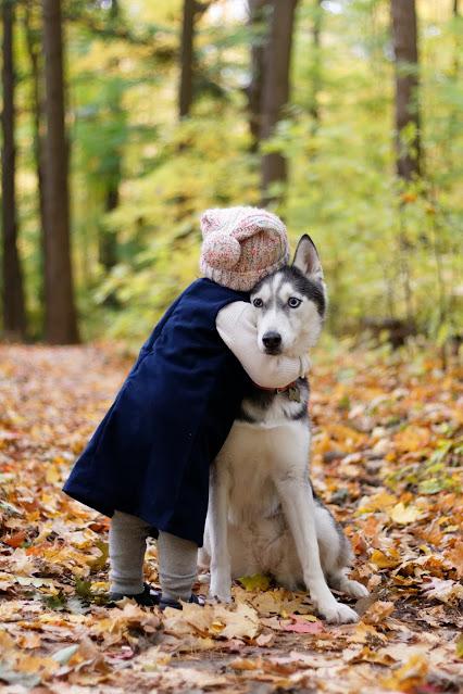 child hugging dog Photo by __ drz __ on Unsplash