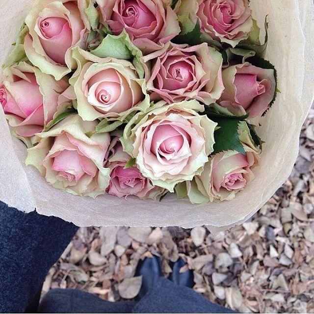 كُن مُزهِراً غابَ الزهرُ بينَ 11008205_10269341673