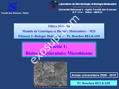 cours Biologie Moléculaire Microbienne svi5