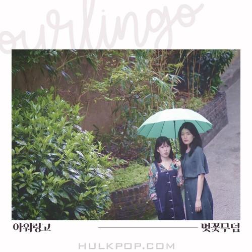 ourlingo – 벚꽃무덤 – Single