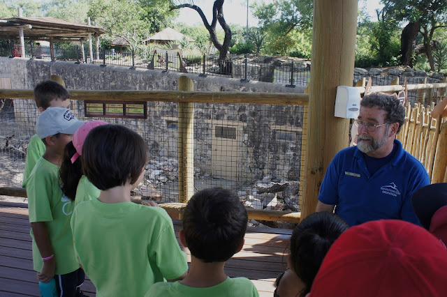 A Look Inside Summer Camp at the San Antonio Zoo