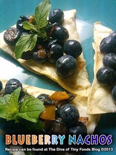 http://divaoftinyfoods.blogspot.com/2013/02/blueberry-salsa-blueberry-nachos.html