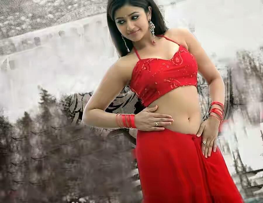 Poonam Bajwa Sexy Navel Pictures