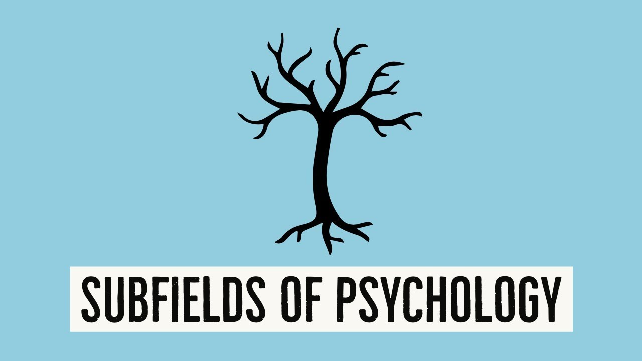 Psychology is a subject that relates to many fields. All subfields of psychology have a common goal. Psychology helps us to understand how we perceive. BY AYUSH