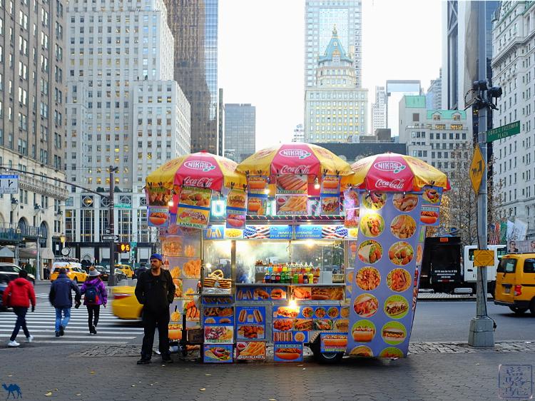 Le Chameau Bleu - Vendeur dans les rues de Manhattan New York