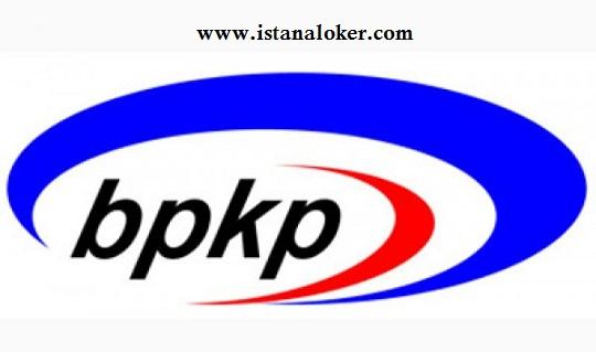 Rekrutmen Pegawai Non PNS Programmer Senior Pusat Informasi Pengawasan BPKP