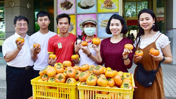 颱風重創越南中部 明道越籍生義賣甜柿助家園重建
