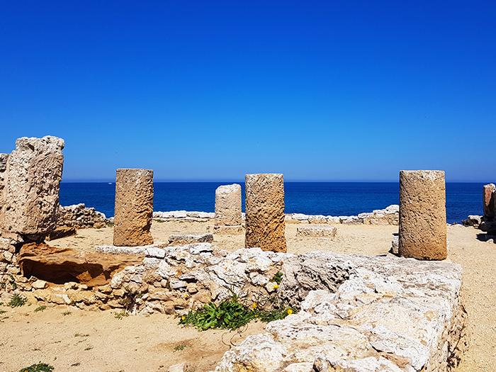 TUNISIE CAP BON BLOG NIMOISE NIMES 6