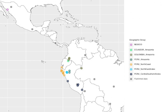 Human genetic diversity of South America reveals complex history of Amazonia