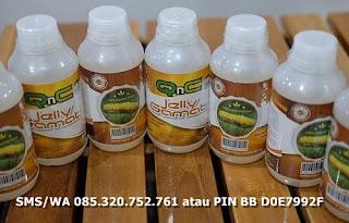 obat herbal untuk menyembuhkan nyeri cangkeng / pinggang yang aman