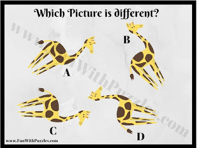 Spot the Different Picture Puzzle