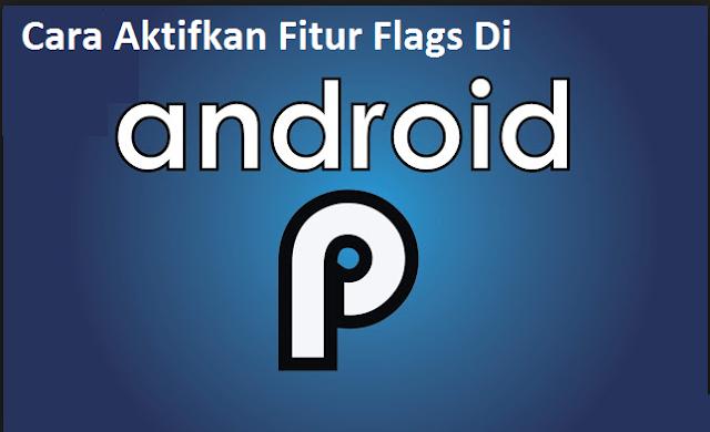 Cara Aktifkan Fitur Flag di android 9 Pie