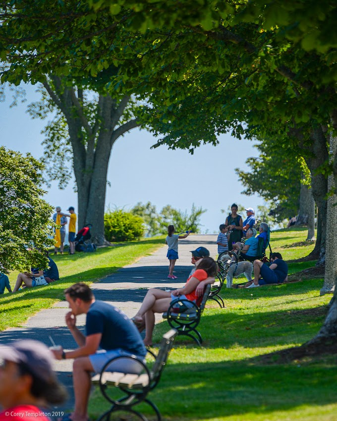 Portland, Maine USA July 2019 photo by Corey Templeton. A busy day for the benches along the Eastern Promenade.