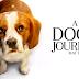 A DOG'S JOURNEY Advance Screening Passes!