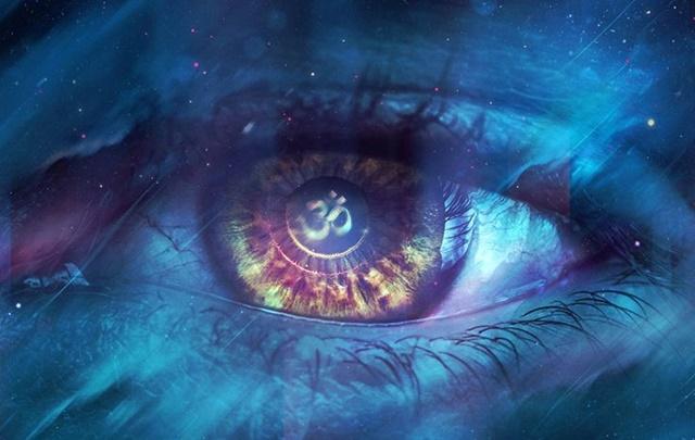 CONECTE-SE COM O FUNDO DO MAR – Cetáceos de Sirius B (25 de Fevereiro 2018)