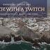 Beach with a Twitch