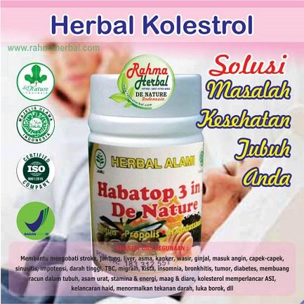 Herbal Kolestrol dan Lemak Darah