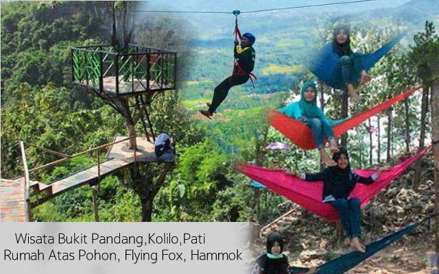 Wisata Exstrime Bukit Padang Kolilo Flying fox, Rumah Atas Pohon, Hammok