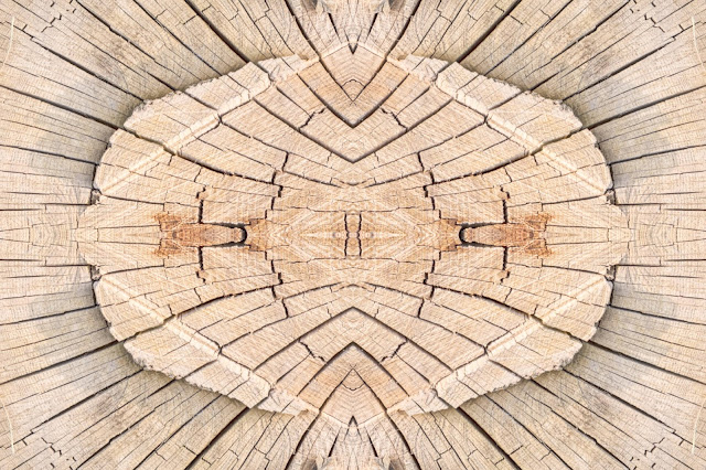 Cut Wood, nature abstract, design, images