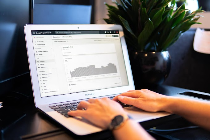 Want to become a pro Blogger then start SEO.