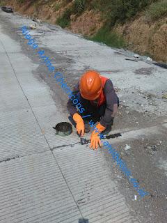 perbaikan retak pada beton