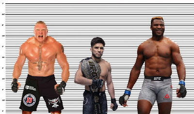 Henry Cejudo height comparison with Brock Lesnar and Francis Ngannou