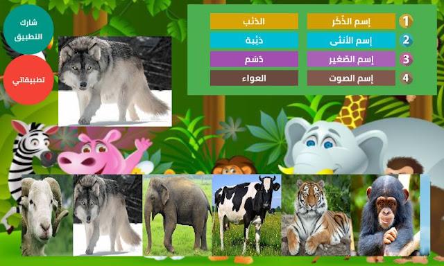 تطبيق أسماء صغار و إناثُ و ذكور و أصوات الحيوانات بالصوت و الصورة | موسوعة الحيوان P2