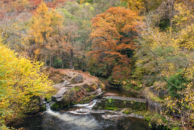 A bend in the Afon Mellte surrounded by autumn colour in the Brecon Beacons by Martyn Ferry Photography