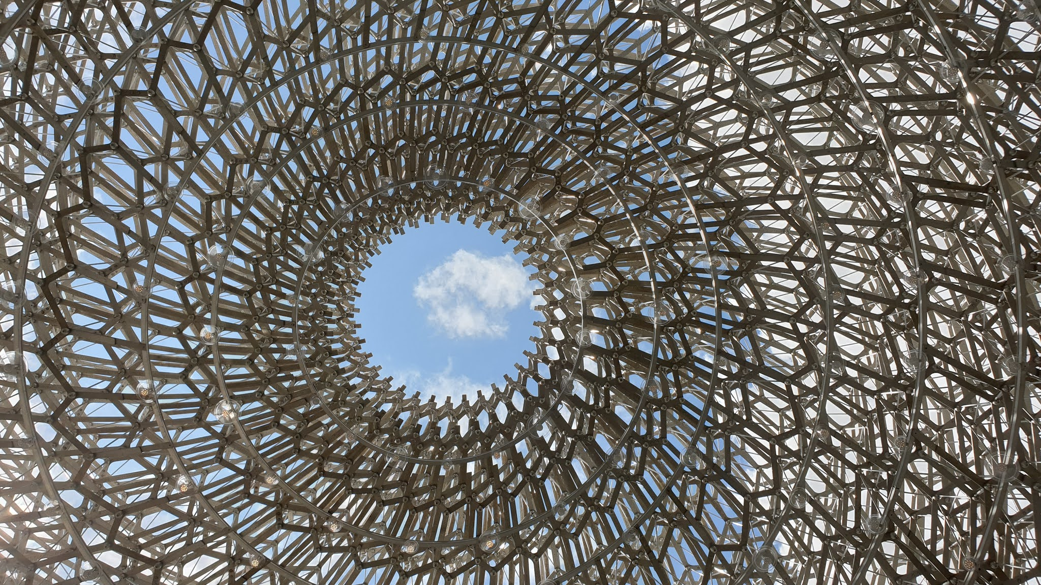 the hive opening at kew gardens