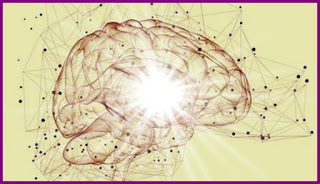 Wiki Antrenarea Creierului cu unde LAMBDA beneficii
