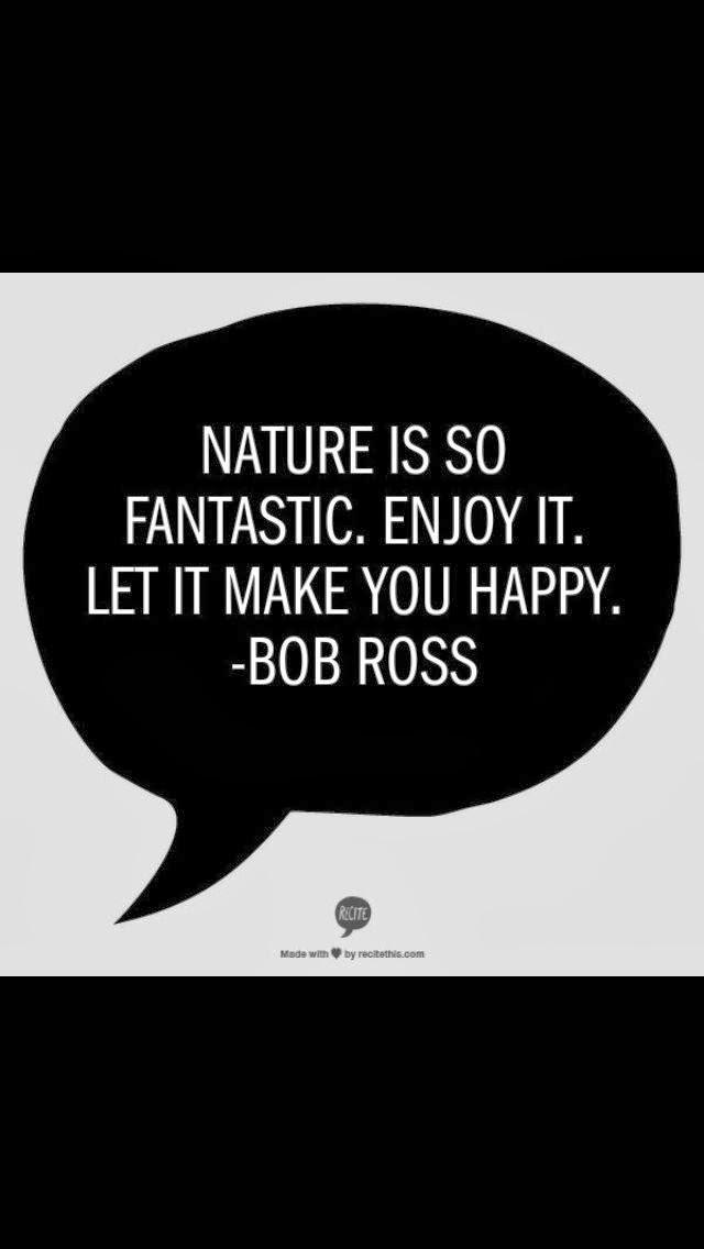 magic white bob ross