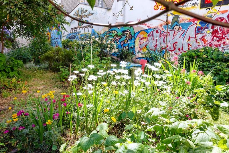 Paris : Jardin Fessart, oasis communautaire aux Buttes ...