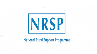 NRSP Jobs 2021 - NRSP Jobs Online Apply - NRSP Careers - NRSP Hiring - NRSP Recruitment - National Rural Support Programme Jobs 2021 - Management Trainees Jobs 2021 - Online Apply :- hrnrspsgd@gmail.com