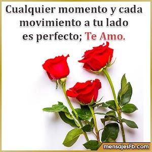 Flores de rosas con mensajes de amor